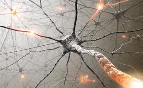 Nerve impairment after intense orgasm — photo 3